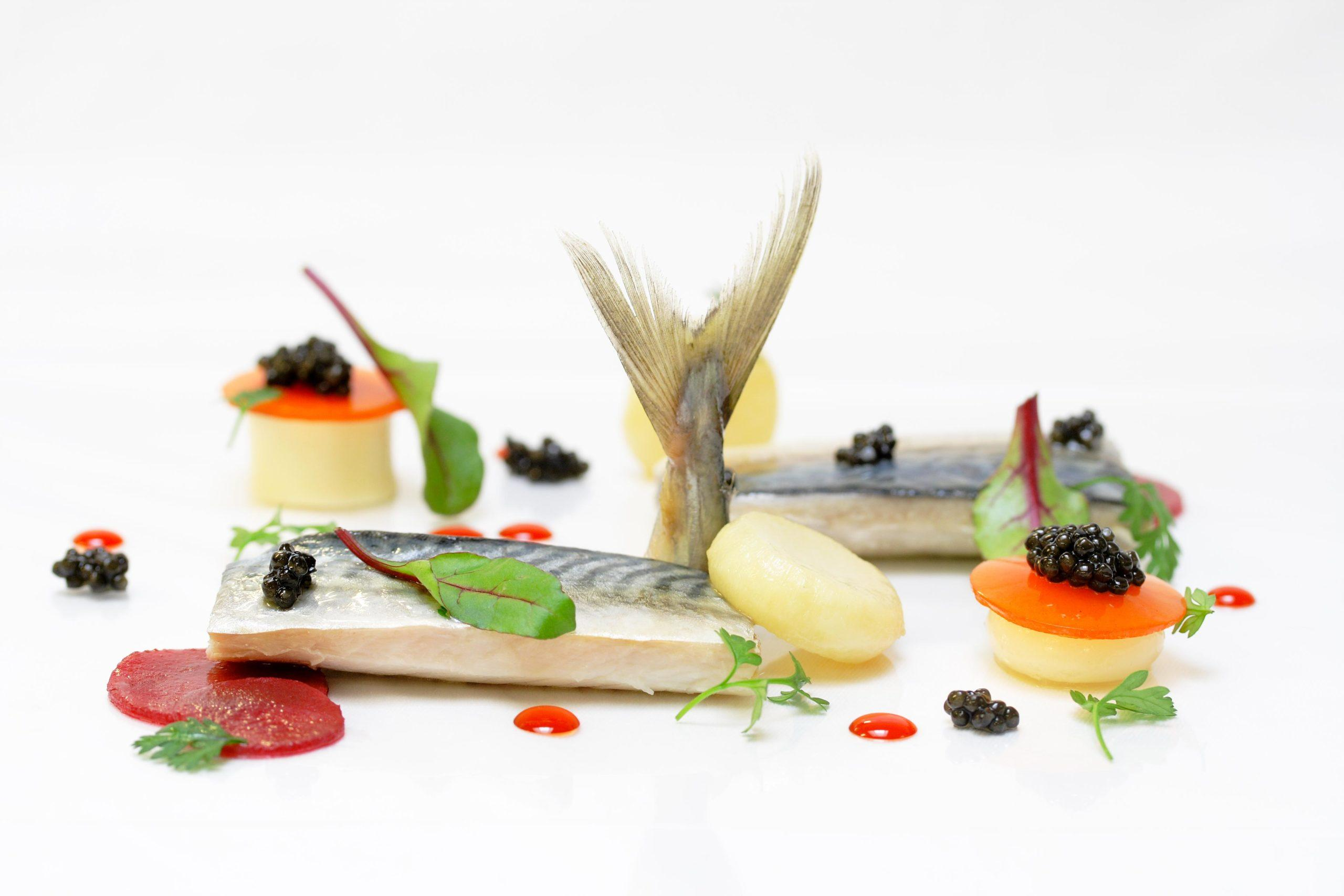 Maquereau-au-vin-blanc bertrand larzul